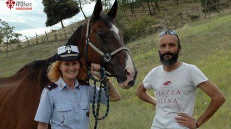 Albert, il cavallo della polizia municipale