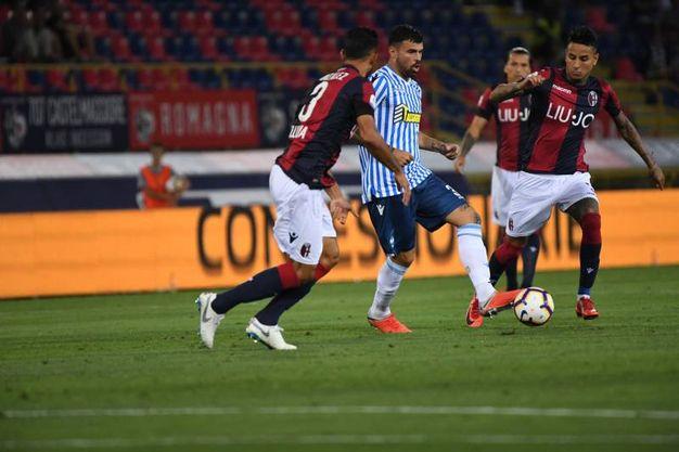 Il derby Bologna-Spal (foto Schicchi)