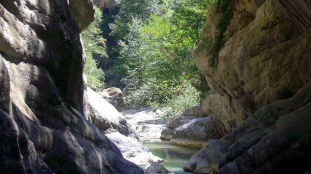 Una immagine delle Gole del Raganello tratta da Wikipedia