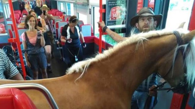Frieda, il cavallo, e il cavaliere Benni su un treno austriaco (da Facebook)
