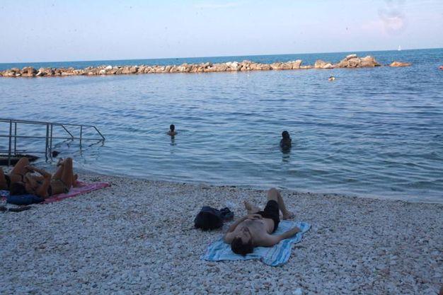 La vita di mare sembra comunque procedere serena... (Foto Antic)