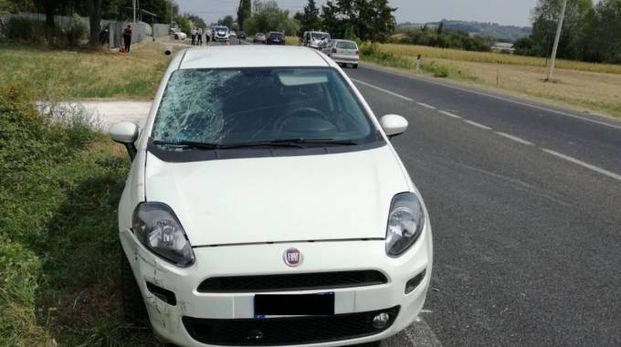 La Fiat Punto guidata dall'87enne di Urbino che ha tamponato violentemente un ciclista sulla Montelabbatese
