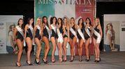 Le 11 finaliste che andranno a Jesolo per le prefinali nazionali (Foto Marco Isola)
