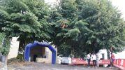 La cronoscalata podistica Filecchio–Tiglio Alto (foto Regalami un sorriso onlus)