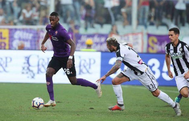 Fiorentina-Udinese (Fotocronache Germogli)