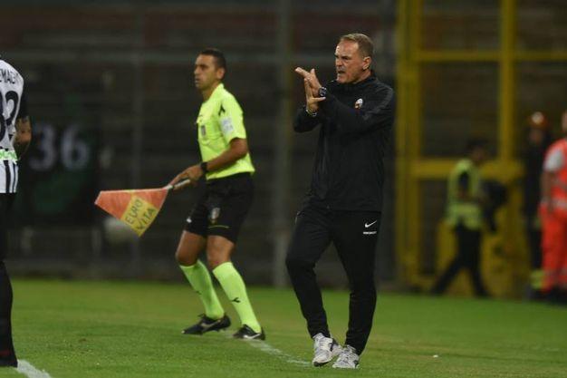 L'allenatore dell'Ascoli Vincenzo Vivarini (Foto LaPresse)