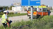 Sul posto la polizia municipale per i rilievi (Foto Zani)