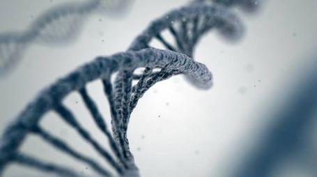 La doppia elica del DNA (Foto: iStock/farakos)