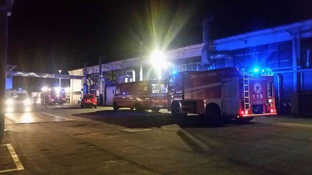 Vigili del fuoco in forze nella azienda dove ieri notte si è sviluppato il rogo (Isolapress)