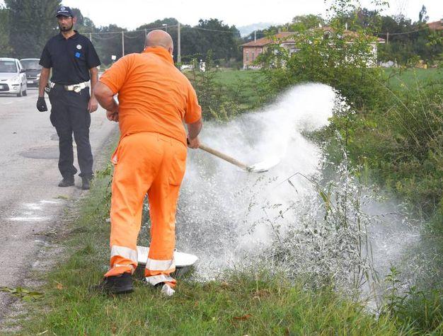 Il corpo ritrovato nella vegetazione di Montalbano di San Giovanni in Marignano (foto Migliorini)
