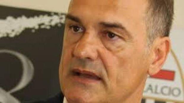 Mister Vivarini