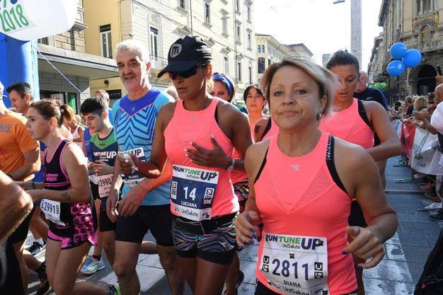 Run Tune Up 2018, con la maglia azzurra Gelindo Bordin (foto Schicchi)