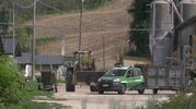 Senigallia, la perquisizione dei carabinieri nell'allevamento degli orrori