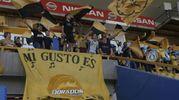 L'entusiasmo dei tifosi (Ansa)