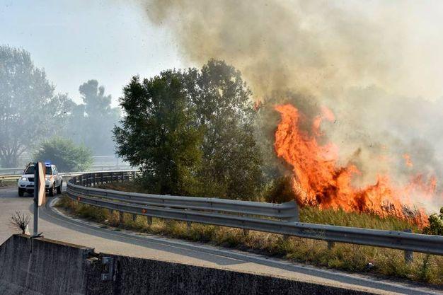L'incendio sulla Fi-Pi-Li (foto Novi)