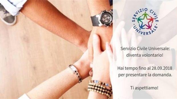 Servizio civile con Confcooperative Toscana