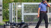 Incidente mortale alle 8.50 a Faenza, in via Pana (foto Corelli)