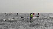 La frazione di nuoto (foto Degidi-Bedeschi)