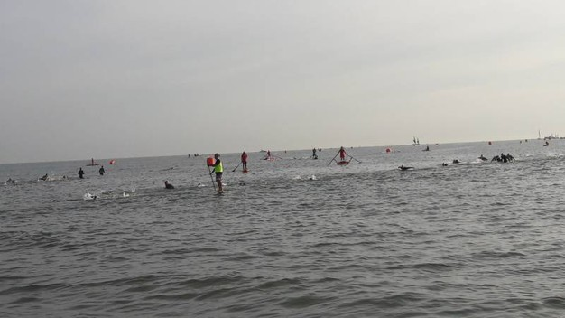 In mare per 3,8 chilometri (foto Degidi-Bedeschi)