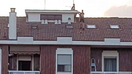 Corbetta, ragazzi sul tetto