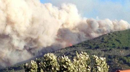 Il vasto incendio a Calci la mattina del 25 settembre (Ansa)