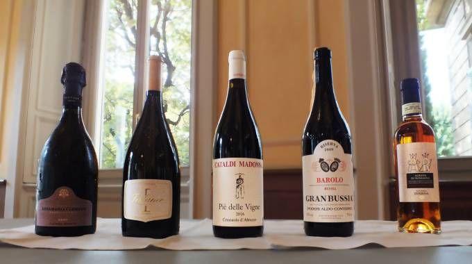 I cinque migliori vini nelle rispettive categorie secondo la Guida Veronelli 2019