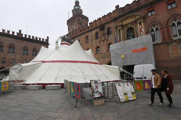 Piazza Maggiore ospita la kermesse Città di Circo (Foto Schicchi)