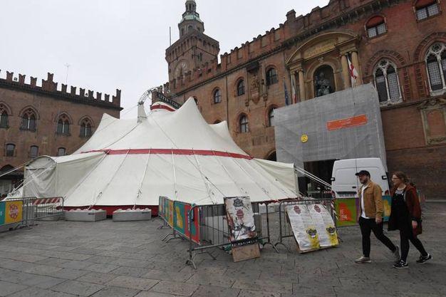 Performance, spettacoli circensi, prestigiatori ed esibizioni per ogni età (Foto Schicchi)