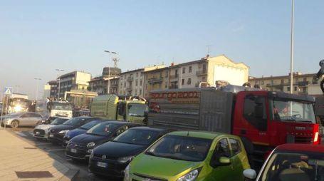 I camion in fila a Novoli