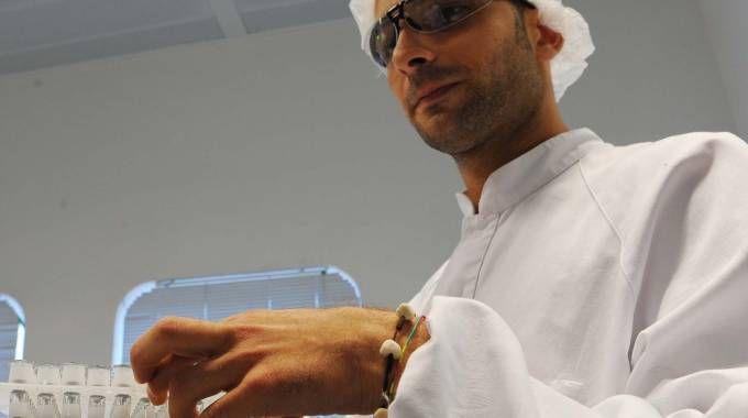 Un ricercatore della divisione vaccini della Novartis a Siena, in un'immagine d'archivio (ANSA)