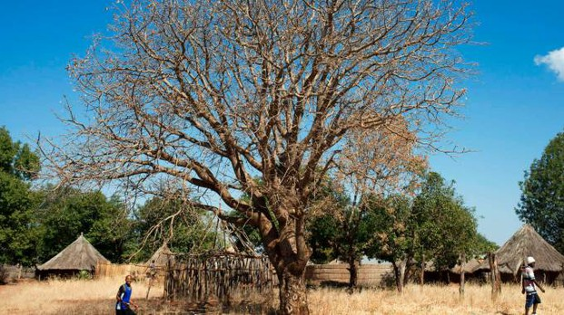 Un villaggio africano