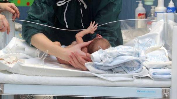 Un neonato in ospedale (Newpress)