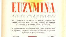 Euzymina