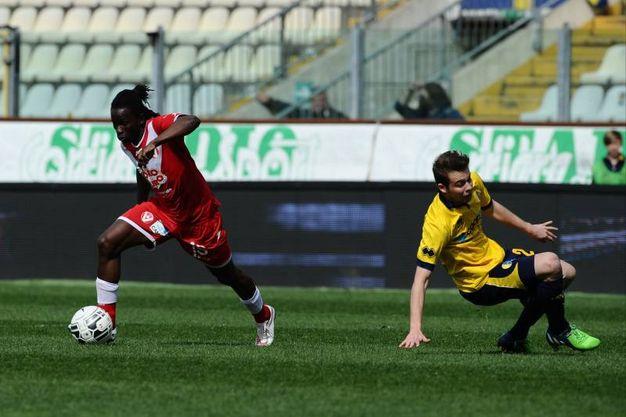 Modena-Varese 1-1 / LaPresse