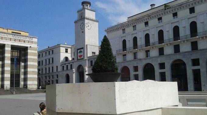 L'albero che ha sostituito la statua tanto discussa