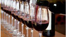 Il vino protagonista