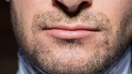 Le donne sono attratte da uomini con la barba incolta – foto Jeff Wasserman/Alamy