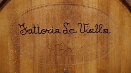 Il logo della Fattoria La Vialla – Foto: Fattoria La Vialla