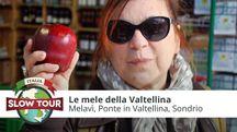 Le mele della Valtellina