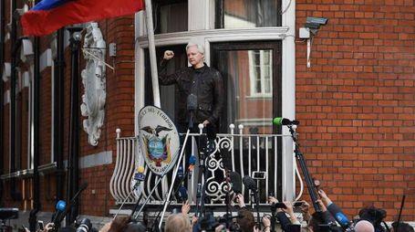 Assange alla finestra dell'ambasciata dell'Ecuador a Londra (Ansa)