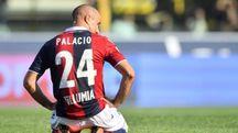 Rodrigo Palacio