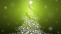 Natale green: il Wwf spiega come