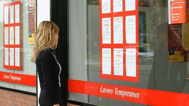 Disoccupazione, una giovane donna in cerca di lavoro (Newpress)