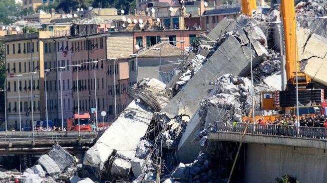 Il ponte Morandi crollato (Newpress)
