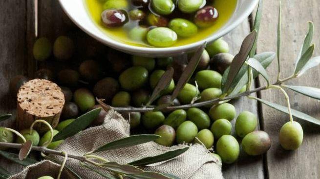 Immagine dal sito monini.com