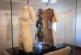 """Situs Viscerum"" in un corpo femminile. Museo Leonardiano di Vinci."