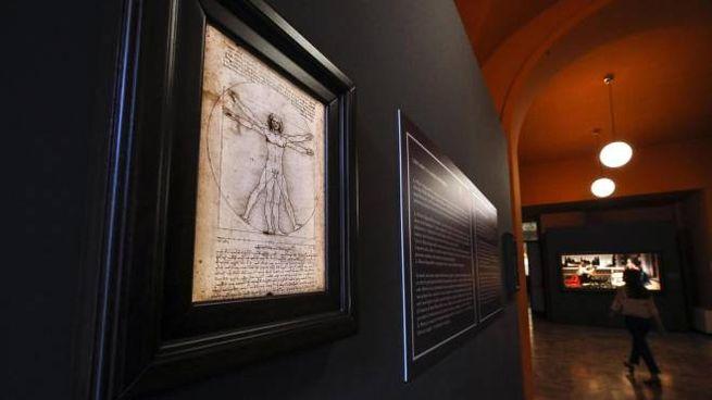 L'Uomo vitruviano di Leonardo (Ansa)