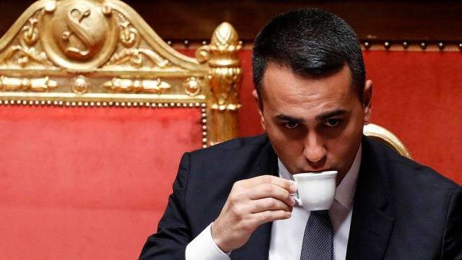 Il ministro degli Esteri e capo politico M5s, Luigi Di Maio (Ansa)