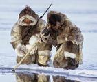 Stagioni stravolte, il male oscuro nell'Artico. Popolo inuit afflitto da strana nostalgia