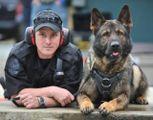 Escalation di furti  La polizia lancia l'allarme  ai proprietari di cani